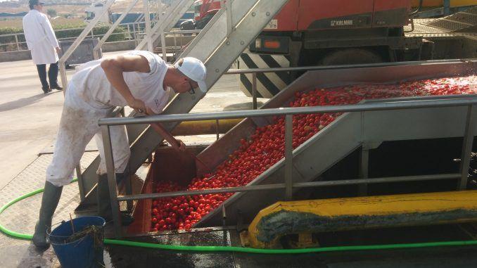 Políticas Agrarias solicitará al Ministerio cambios en la orden de reducción de IRPF por la sequía